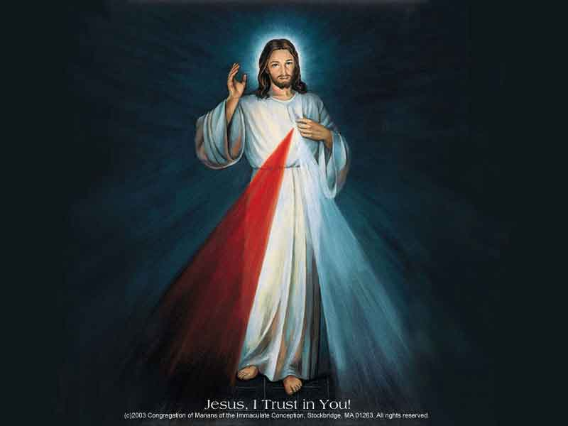 FAUSTINA - LA CONGREGACION DE LAS HERMANAS DE JESUS